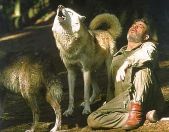wolfsfreund3