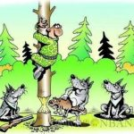 Karikatur Wölfe